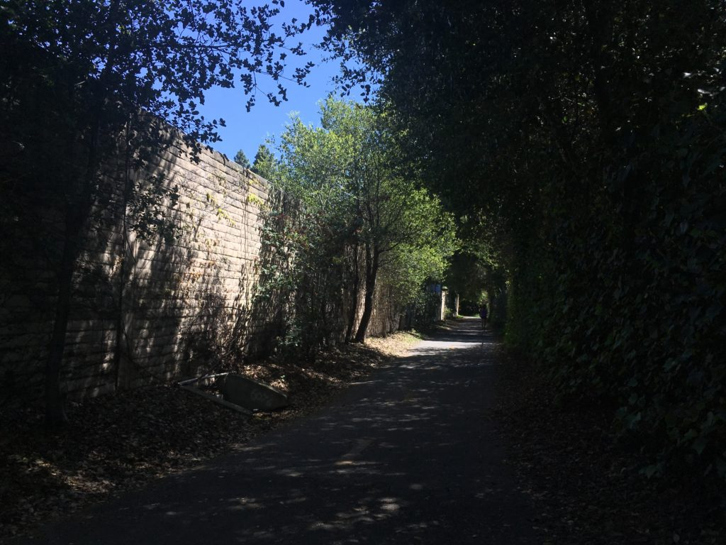 a bike path with a wall on one side and some trees on the other, with dappled shade and sunlight