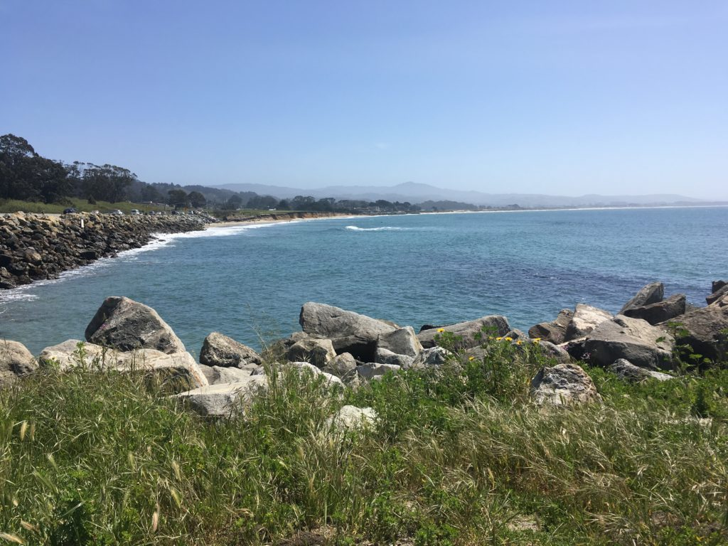 a view of Half Moon Bay from the north end. There is blue ocean, beach and bluffs and a clear blue sky.
