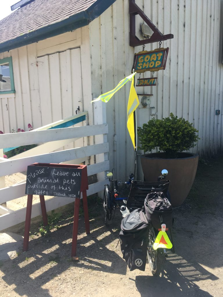 a recumbent trike parked near a sign that says Goat Shop, and hanging below it a sign that says, Shut.