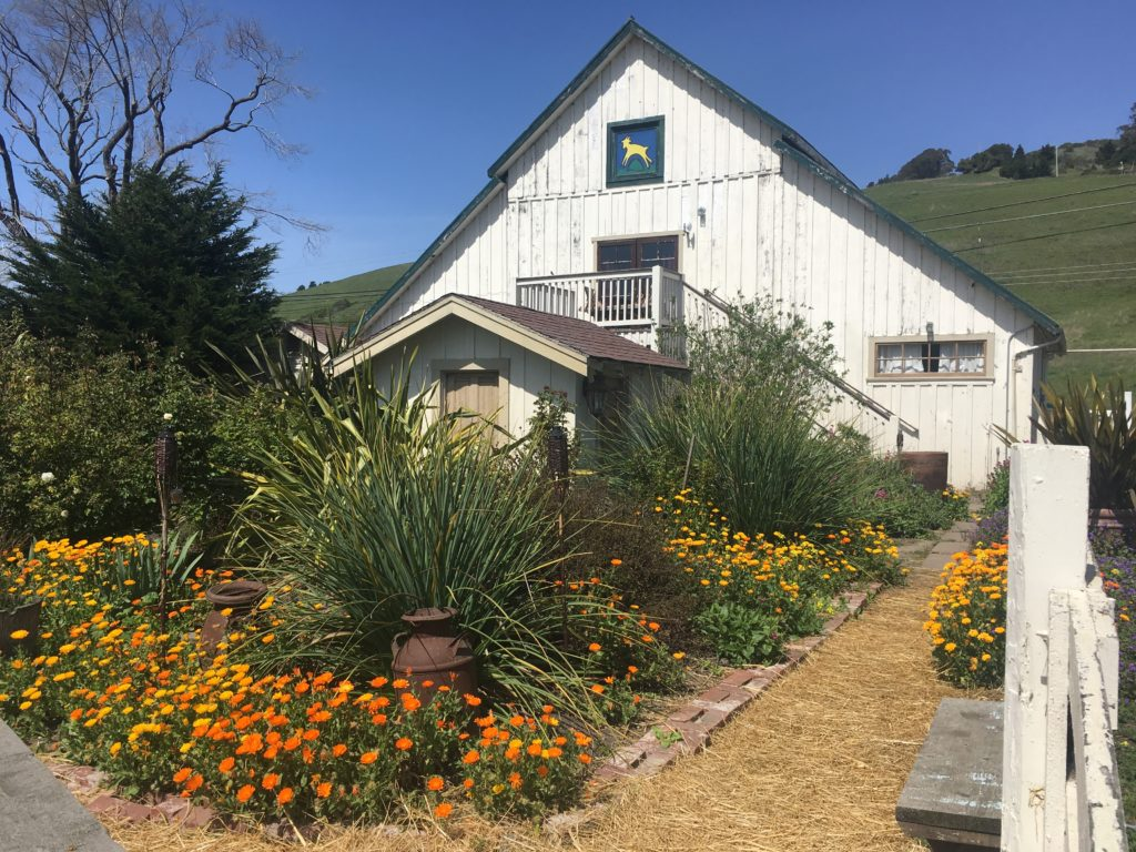 A white barn and a garden with lots of flowers in it.